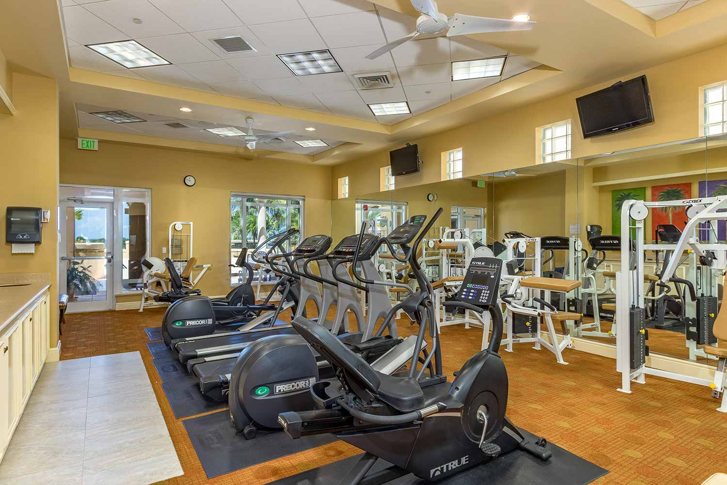 Gym with ellipticals image
